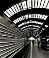Platform Lines