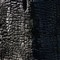 Black Trunk (texture), Kew Gardens