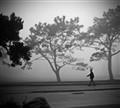Golf-Course-Fog
