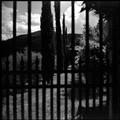behind iron bars..