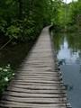 Lonely Boardwalk