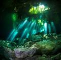 Cenote Rays