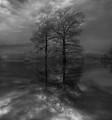 Imaginary reflection