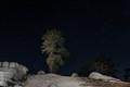 Sierra Star light