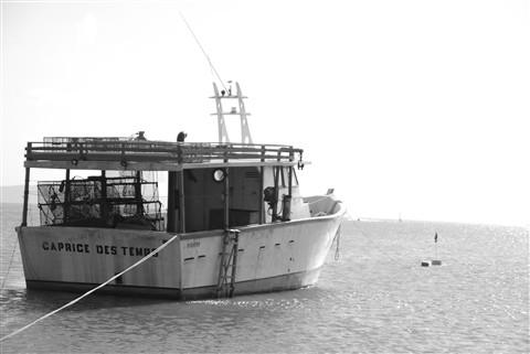 Barco monocromatico