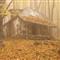 autumn-P1130898-OldHouse