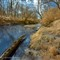 Peachtree Creek South Fork 3-25-2013_120270A