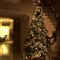 ChristmasTree3_HDR