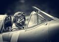 Sptifire Pilot
