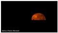 Kellys Plains Moonset