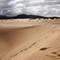 Corralejo Sand Dunes - I
