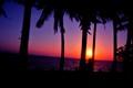 Gumaca Sunrise