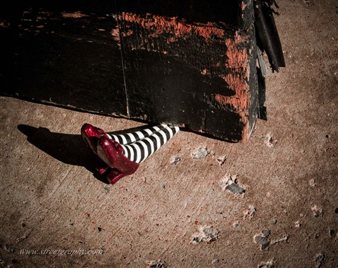Ruby Slippers (1 of 1)