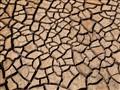 Baked mud mosiac