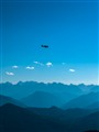 Plane above the Alps