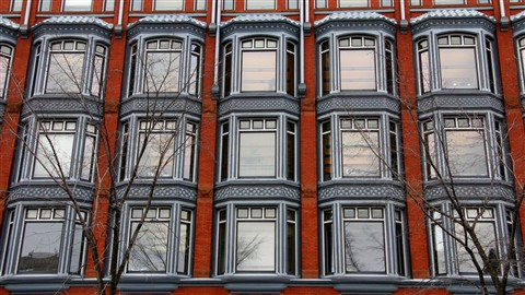 Windows on Elgin St. Ottawa