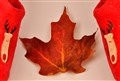One leaf, 2 comfy slippers….Canada