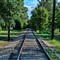 Forest Park Train Track_Export-1