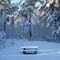 07 bench: OLYMPUS DIGITAL CAMERA