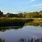 Beaver Dam II