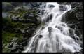 Falls Water I