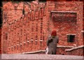 REd hairs on the red wall