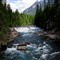 Avalanche River, National Glacier Park_rp