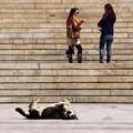 Street life - Syntagma - Σύνταγμα