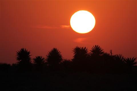 Sun Set PortmansField Texas