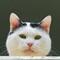 P5251244_DxO: OLYMPUS DIGITAL CAMERA