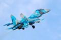 Ukrainian AF Flanker