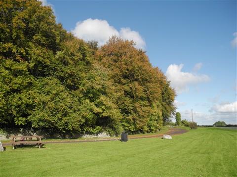Ardscull Moat, Kildare