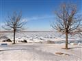 The Lake in December