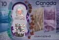 Owl's Bouquet in $10 Bill