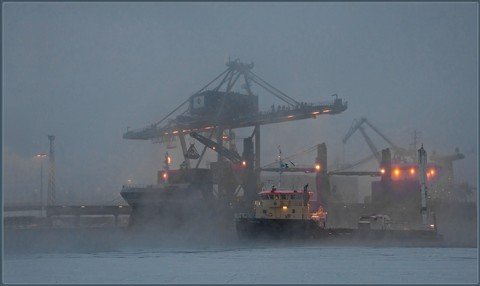 HarbourFog