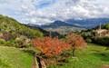 Hillside Farm Mallorca