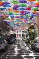 Umbrellas in the city