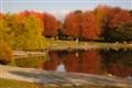 Autumn Afternoon-1