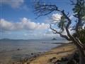 A beach in paradise