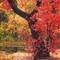 Autumn Leaves BlackTree Challenge