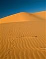 Dune Perspective