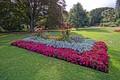 Botanical Gardens, Christchurch, NZ