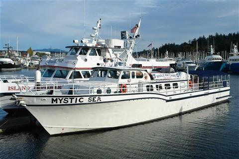 Mystic Sea_878