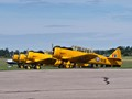 Harvards 'On the line'