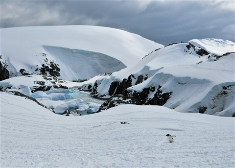 Snow scene Antarctica