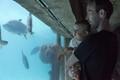 Aquarium Day