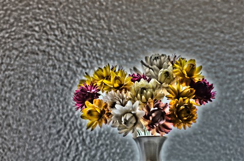 Haloed Flowers in Vase