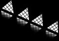 Smithsonian Windows