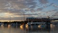 Blackwattle Bay Sydney Easter