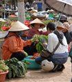 Fresh vegetables (Dalat, Vietnam)
